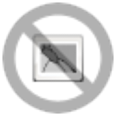 Petunia                                       x hybrida grandiflora F₁                                       SUCCESS! 360°                                       Maxi Mix